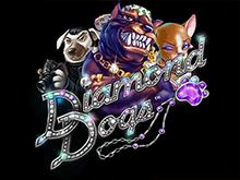 Играть Diamond Dogs онлайн