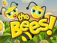 Играть в азартную игру The Bees