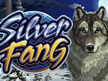 Азартная игра Silver Fang играть