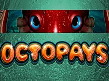 Игровой автомат Сокровище Осьминога