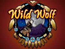 Wild Wolf играть онлайн