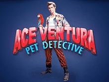 Азартная игра Ace Ventura